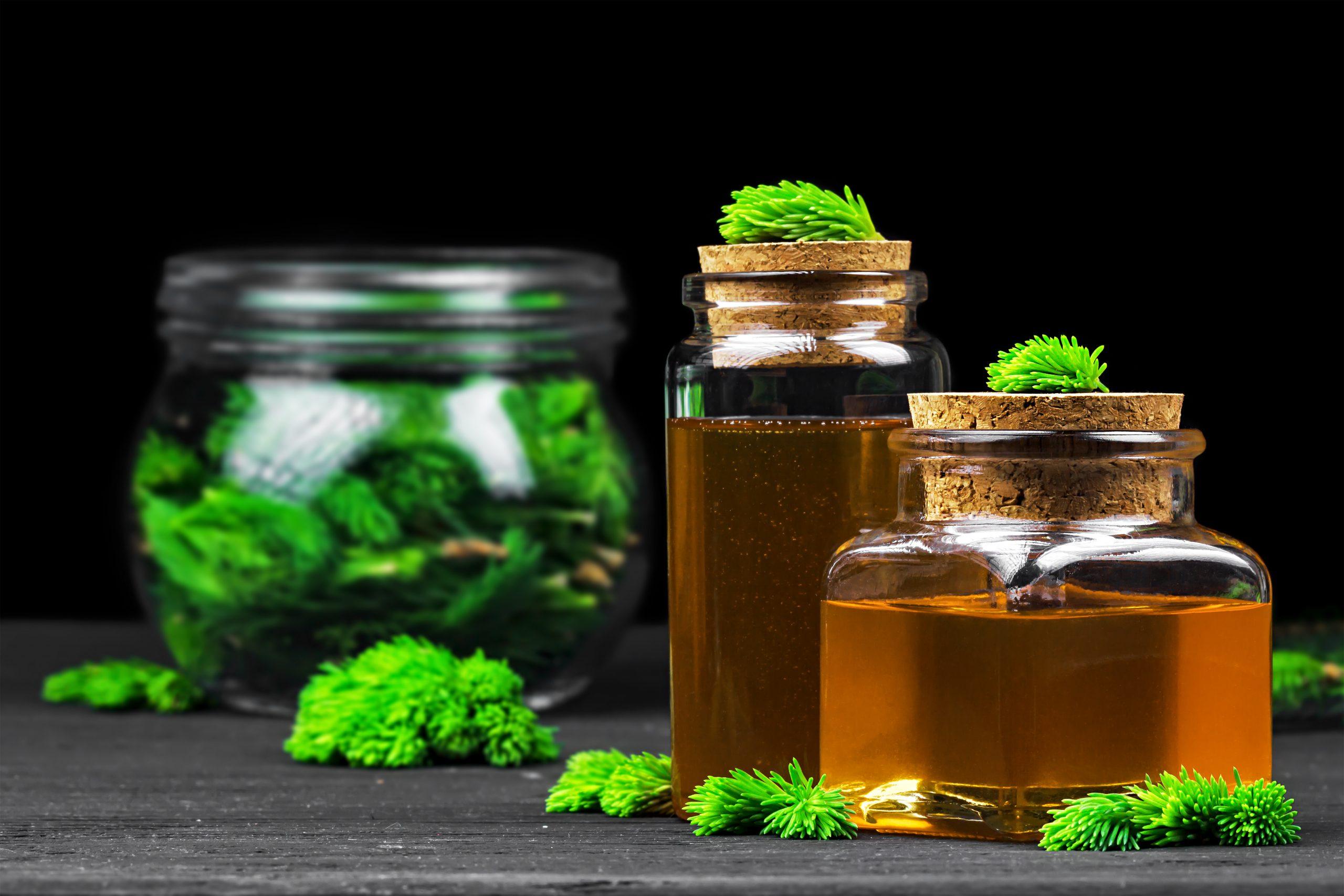 Pflanzlicher Hustenlöser: Test & Empfehlungen (05/21)