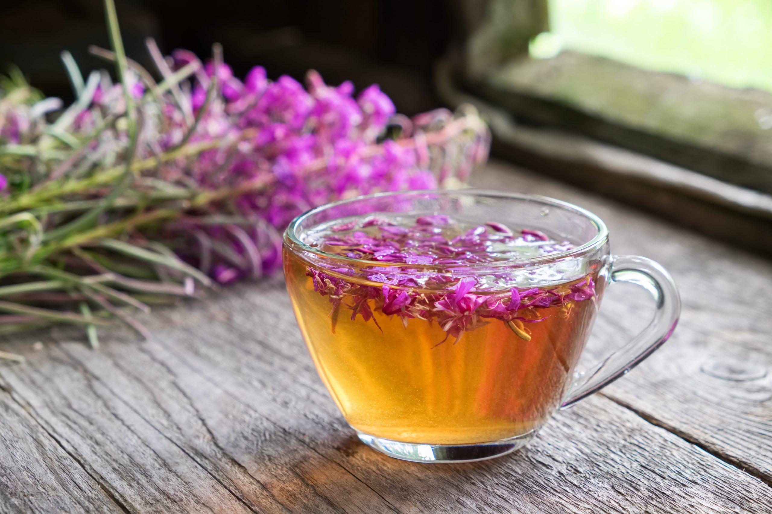 Weidenröschen Tee