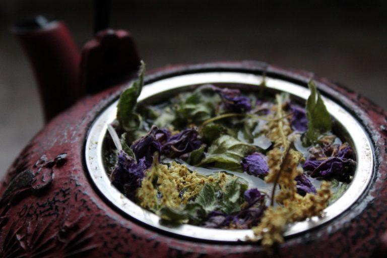 Weidenröschen Tee-1